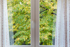 View through a Window on a Windy Autumn Afternoon Royalty Free Stock Photography