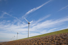 View of windpark in the Dutch Noordoostpolder Royalty Free Stock Photography