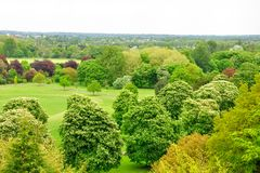 View from the Windsor castle Royalty Free Stock Images