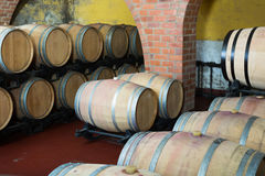 View on winery cellar with wine woods Stock Images