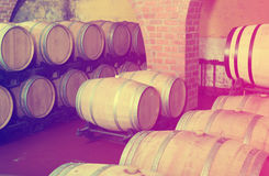 View on winery cellar with wine woods Stock Photos