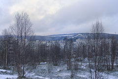 View of the winter trees, house and mountain. View of the winter park, house and mountain Stock Images