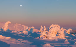 Winter Wonderland. View of winter wonderland during the sunset time, panoramic picture stock images