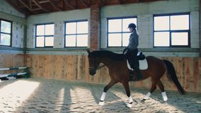 View of woman training with horse while riding fast on sandy spacious arena under roof. Woman riding horse fast on arena. View of woman training with horse while stock video footage