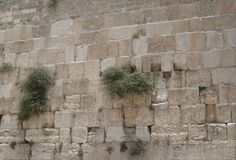 Western Wall women's side. View of the women's side of the Western Wall (Kotel) of the ancient Temple in Jerusalem Stock Photography