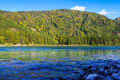 View of the wooded mountain and flowing blue river Royalty Free Stock Photos