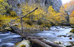 View on wooden bridge over mountain river Stock Images