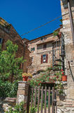View of wooden gate, old buildings with flowering plants at Colle di Val d`Elsa. View of wooden gate, old buildings with flowering plants and blue sunny sky at Stock Photo