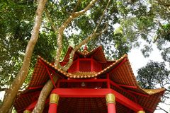 Wooden gazebo roof red color with trees around it on a sunny day stock image