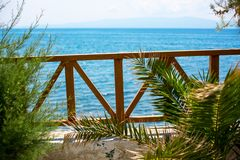 The view from wooden terrace with palms of blue royalty free stock images