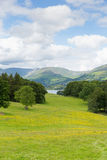 View from Wray Castle of Langdale Valley and mountains Lake District Cumbria uk Stock Image