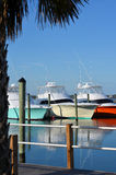 View of Colorful Luxury Yachts from Pier stock images