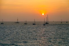 View of yachts on sea in sunset. Panoramic view of yachts on sea in sunset royalty free stock image