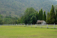 View of the yard and a white wooden fence Royalty Free Stock Images