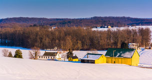 View of a yellow barn and farm during the winter in rural York C Stock Photography