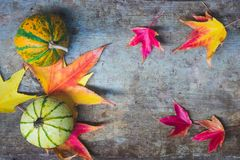 View of yellow and green pumpkins and autumn leaves on rustic wooden background stock image