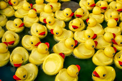 View of the yellow plastic ducks in the pool Royalty Free Stock Image