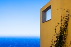 The view of a yellow wall with climbinfg ivy stock photo