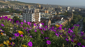 View of Yerevan Royalty Free Stock Images