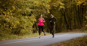 Young people jogging and exercising in autumn nature enviroment. View at young people jogging and exercising in autumn nature enviroment royalty free stock photography