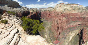 View of Zion Canyon from Angels Landing Stock Photos
