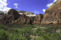 View of Zion Canyon in spring Stock Photos