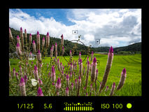 Viewfinder camera with information display. terraced rice field Stock Photography