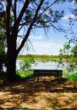 Viewing Bench: Bibra Lake Wetlands Royalty Free Stock Photo
