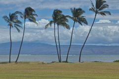 Viewing Maui from Molokai Stock Photos