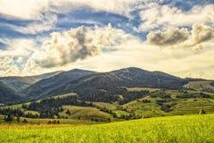 Viewn sulle montagne Carpathians, Podobovets fotografia stock libera da diritti
