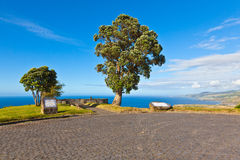 Viewpoint acores Stock Photos