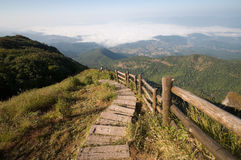 Free Viewpoint At Doi Inthanon National Park Stock Image - 18634091