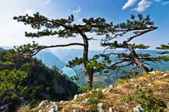 Viewpoint Banjska rock at Tara mountain looking down to Canyon of Drina river. West Serbia royalty free stock photo