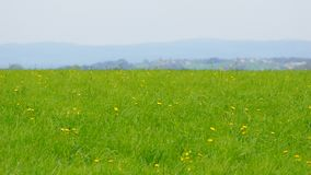 Viewpoint and beautiful spring in central europe Stock Image