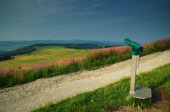 Viewpoint with binocular. A viewpoint in the rhoen in germany with a lot of flowers Royalty Free Stock Photos