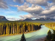 Banff NP, Canadian Rockies. Viewpoint from Bow Valley Parkway road. Bow river and Canadian Rockies. Banff NP, Alberta Canada stock photos
