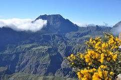 Viewpoint into Cirque de Cilaos, Reunion island. Viewpoint into Cirque de Cilaous, Reunion Island on a sunny summer morning royalty free stock images