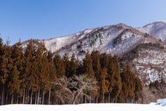 Viewpoint at Gassho-zukuri Village Royalty Free Stock Images