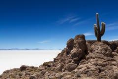 Viewpoint at Isla Pia Pia Royalty Free Stock Image