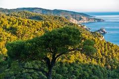 Viewpoint from island backroad to the rocky coast with Agios Ioanis church at sunrise, Skopelos island. Greece stock photos