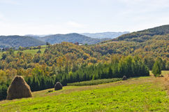 Viewpoint on a landscape of mount Bobija, hills, haystacks, meadows and colorful trees Royalty Free Stock Images