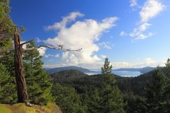Viewpoint on Mount Parke, Mayne Island, British Columbia. The steep ridge of Mount Parke in the center of Mayne Islands offers beautiful views of the Gulf Royalty Free Stock Photo