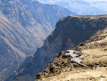 Viewpoint over Colca Canyon Stock Image