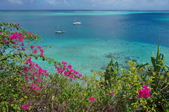 Viewpoint over lagoon with boats and flowers Stock Photography