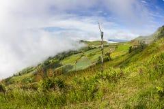Viewpoint at Phu Tub Berk Royalty Free Stock Images