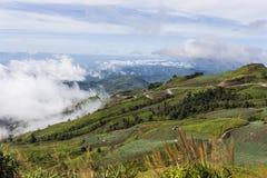 Viewpoint at Phu Tub Berk Stock Images