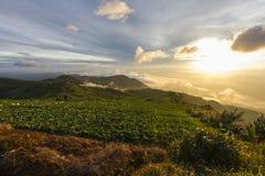 Viewpoint at Phu Tub Berk in Thailand Stock Image