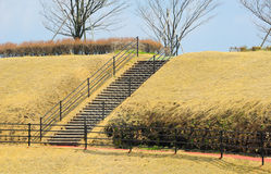 The viewpoint stair and  footstep Stock Image