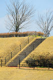 The viewpoint stair and  footstep Stock Photos