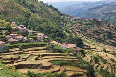 Viewpoint of the Terraces overlooking the Agricultural terraces Sistelo, Portugal